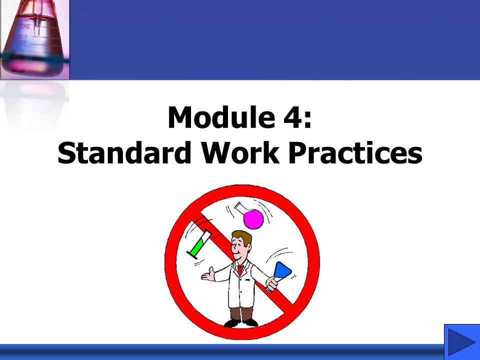 Module 4: Standard Work Practices