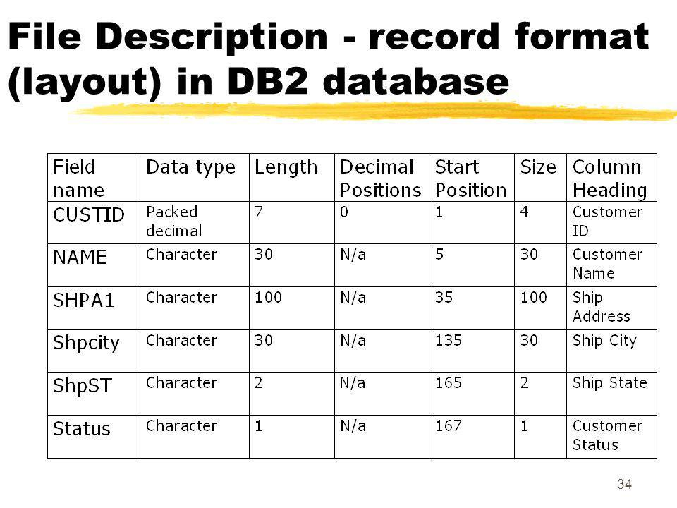 File Description - record format (layout) in DB2 database