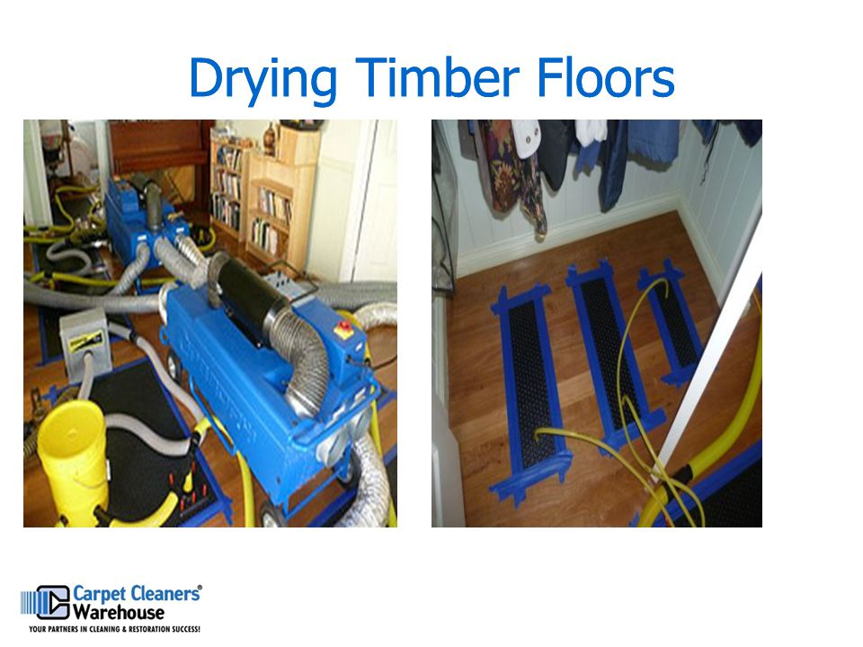 Drying Timber Floors Drying Timber Floors