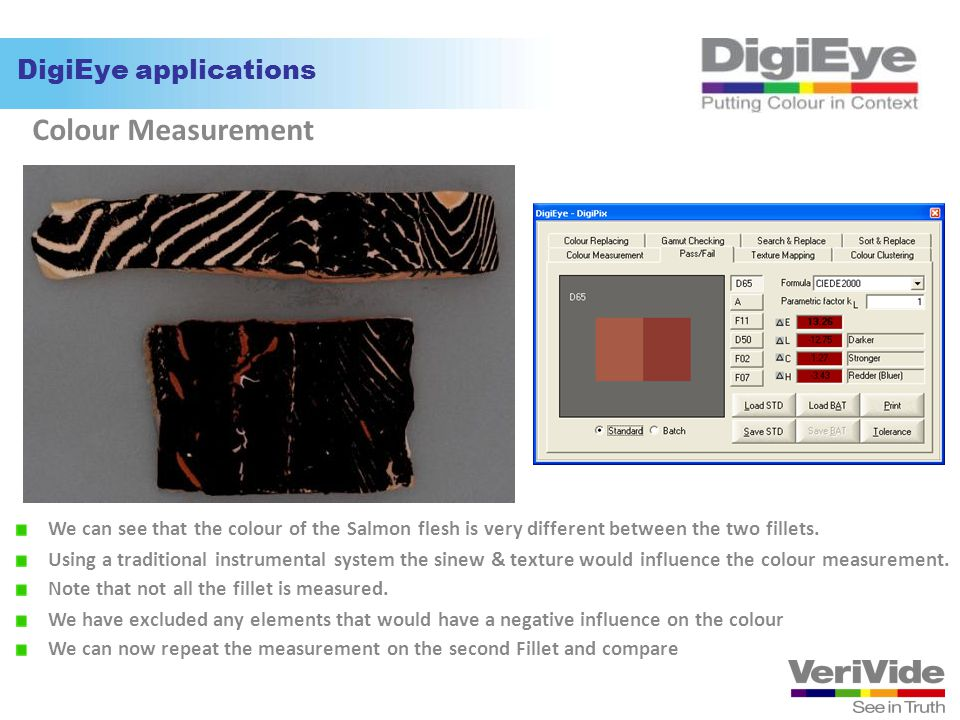 Colour Measurement DigiEye applications