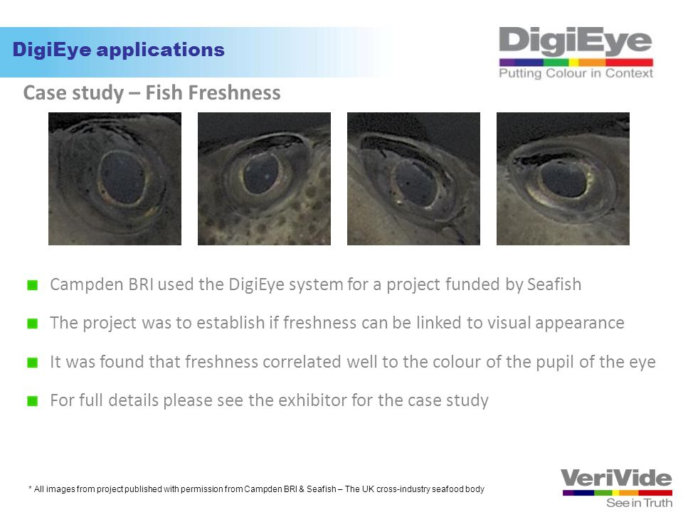 Case study – Fish Freshness