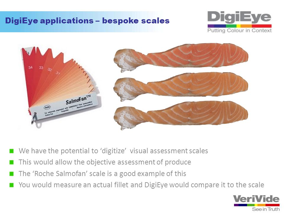 DigiEye applications – bespoke scales