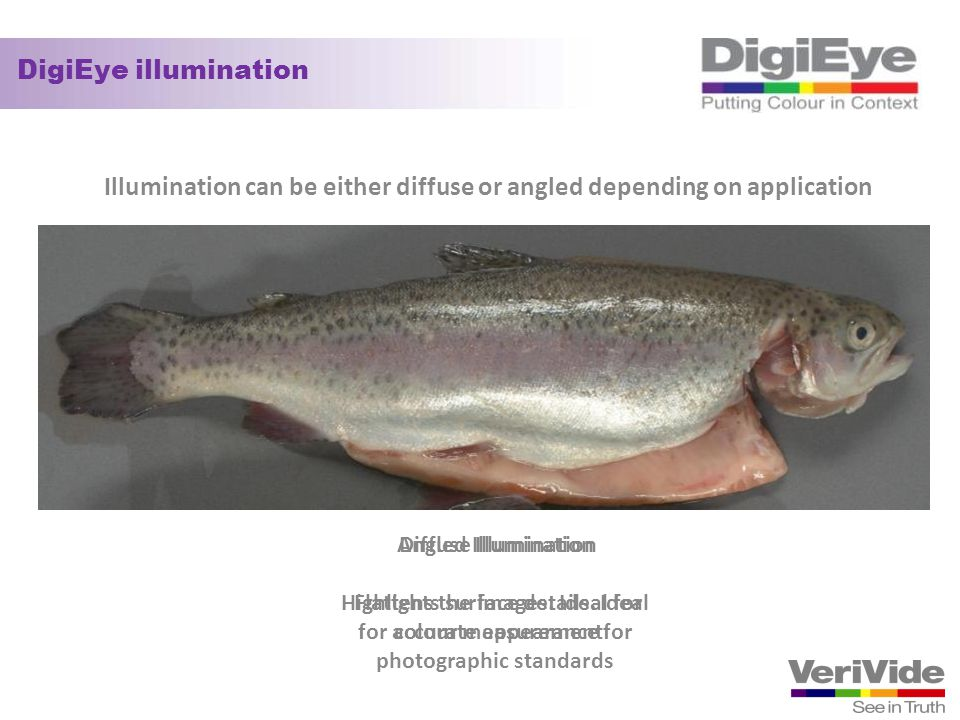 Illumination can be either diffuse or angled depending on application