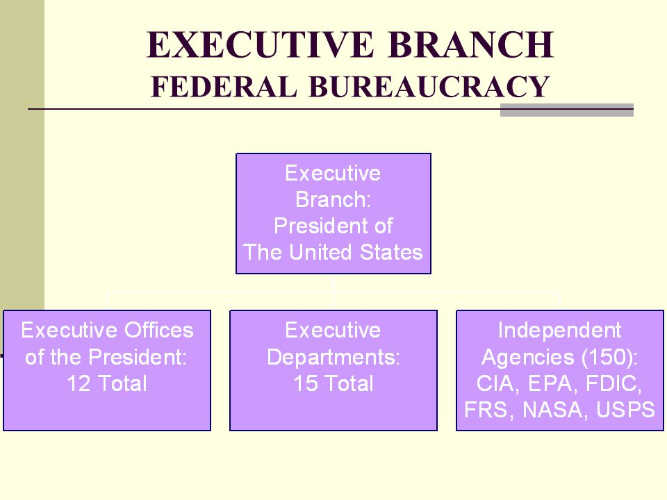 EXECUTIVE BRANCH FEDERAL BUREAUCRACY