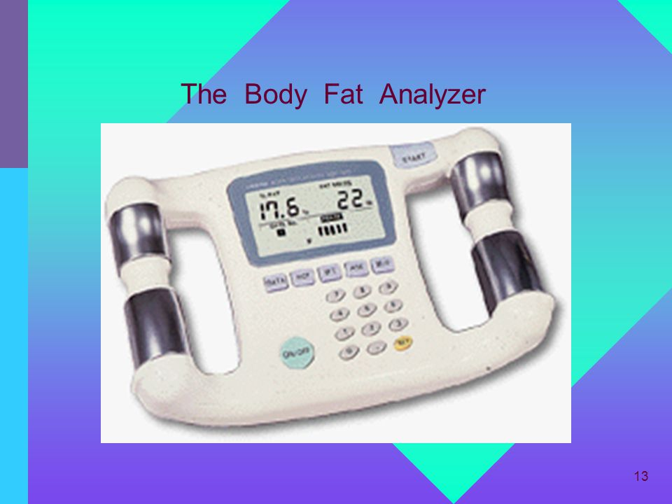 The Body Fat Analyzer