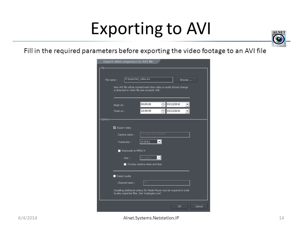 Exporting to AVI Fill in the required parameters before exporting the video footage to an AVI file.