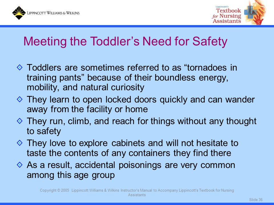 Meeting the Toddler's Need for Safety