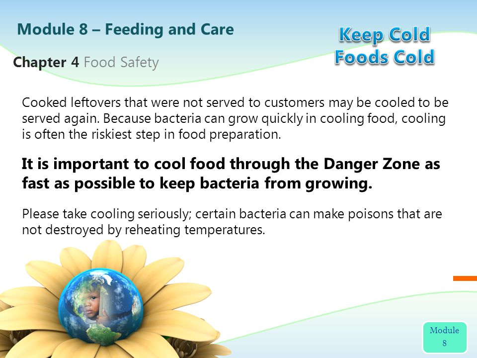 Keep Cold Foods Cold Module 8 – Feeding and Care