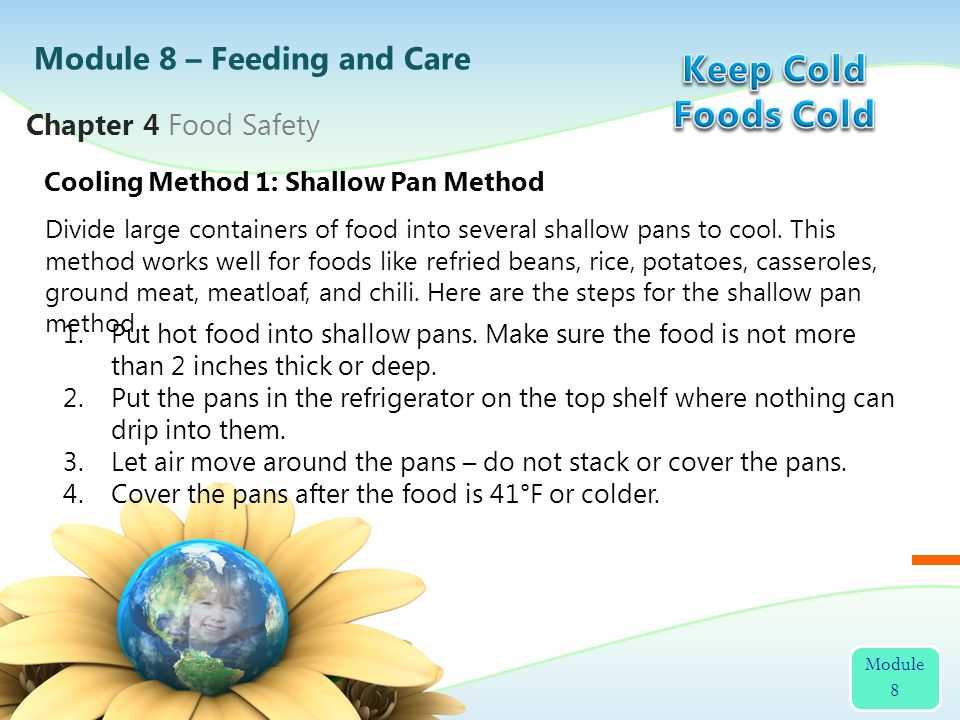 Keep Cold Foods Cold Module 8 – Feeding and Care Chapter 4 Food Safety