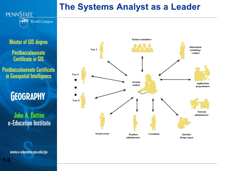 The Systems Analyst as a Leader