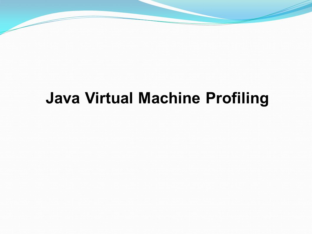 Java Virtual Machine Profiling