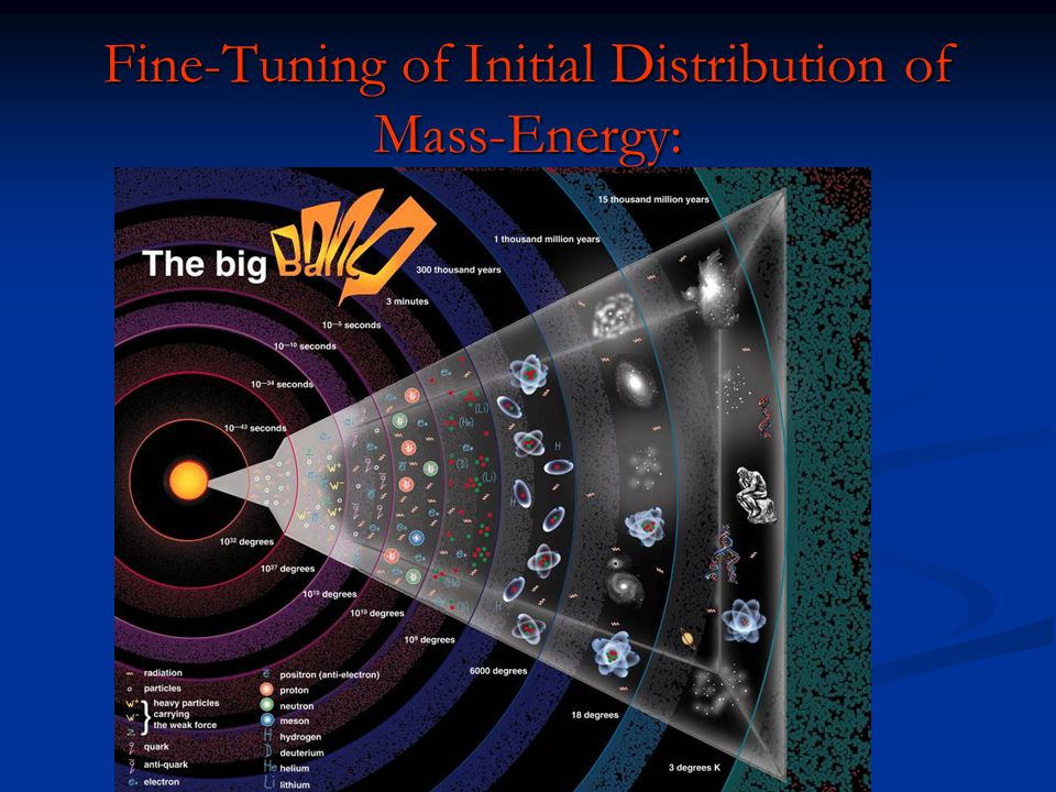 Fine-Tuning of Initial Distribution of Mass-Energy: