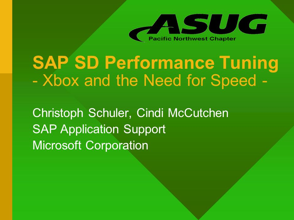 SAP SD Performance Tuning - Xbox and the Need for Speed -