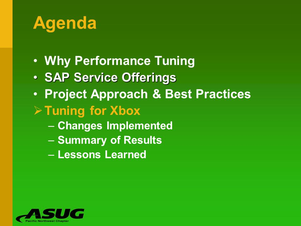 Agenda Why Performance Tuning SAP Service Offerings