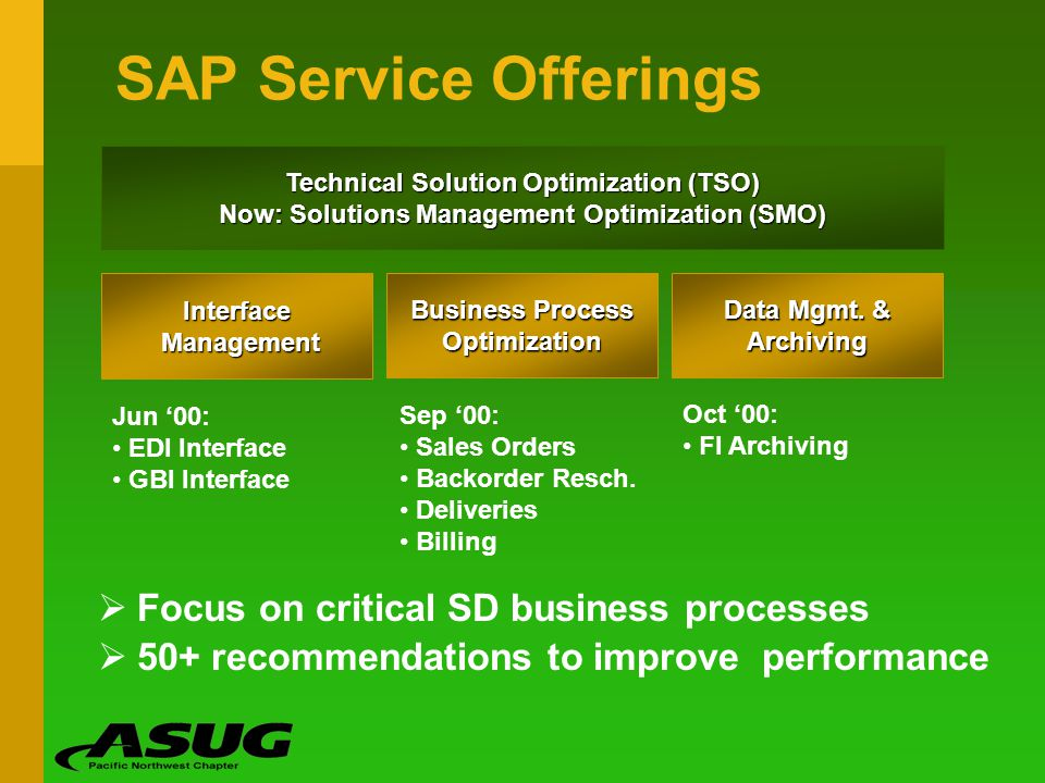 SAP Service Offerings Focus on critical SD business processes