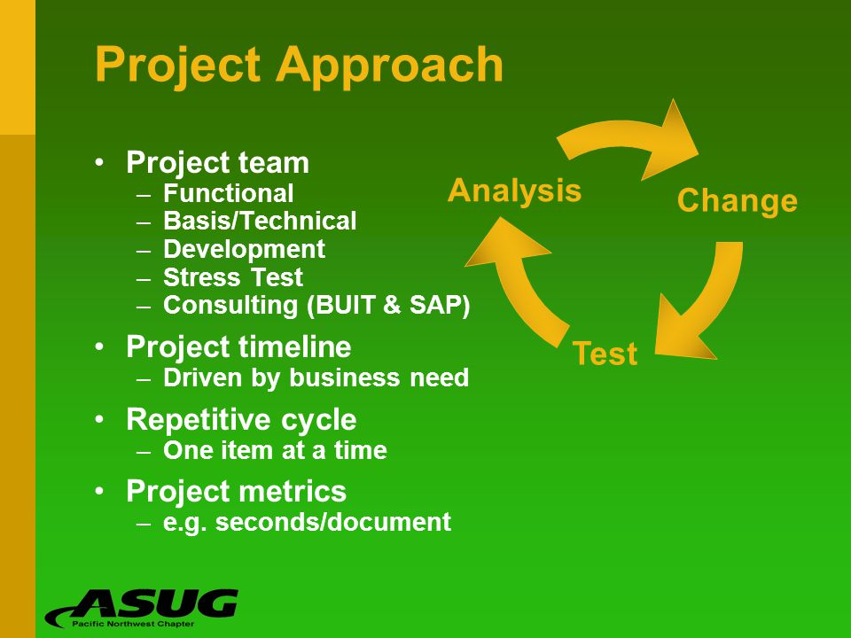 Project Approach Analysis Change Test Project team Project timeline