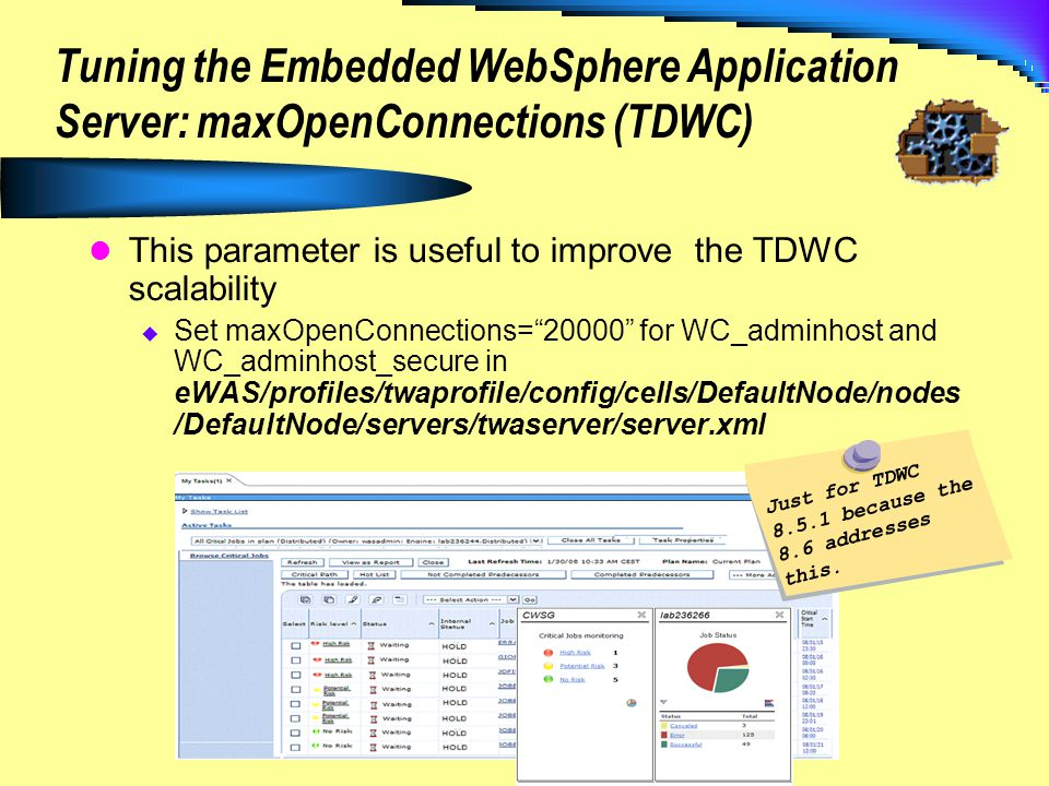 Tuning the Embedded WebSphere Application Server: maxOpenConnections (TDWC)