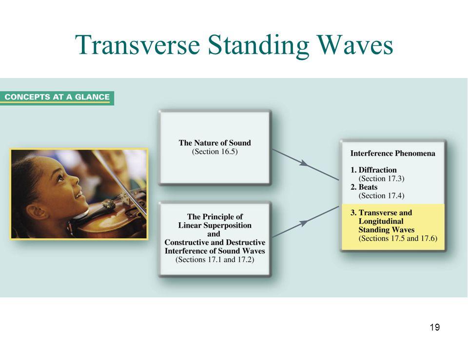 Transverse Standing Waves
