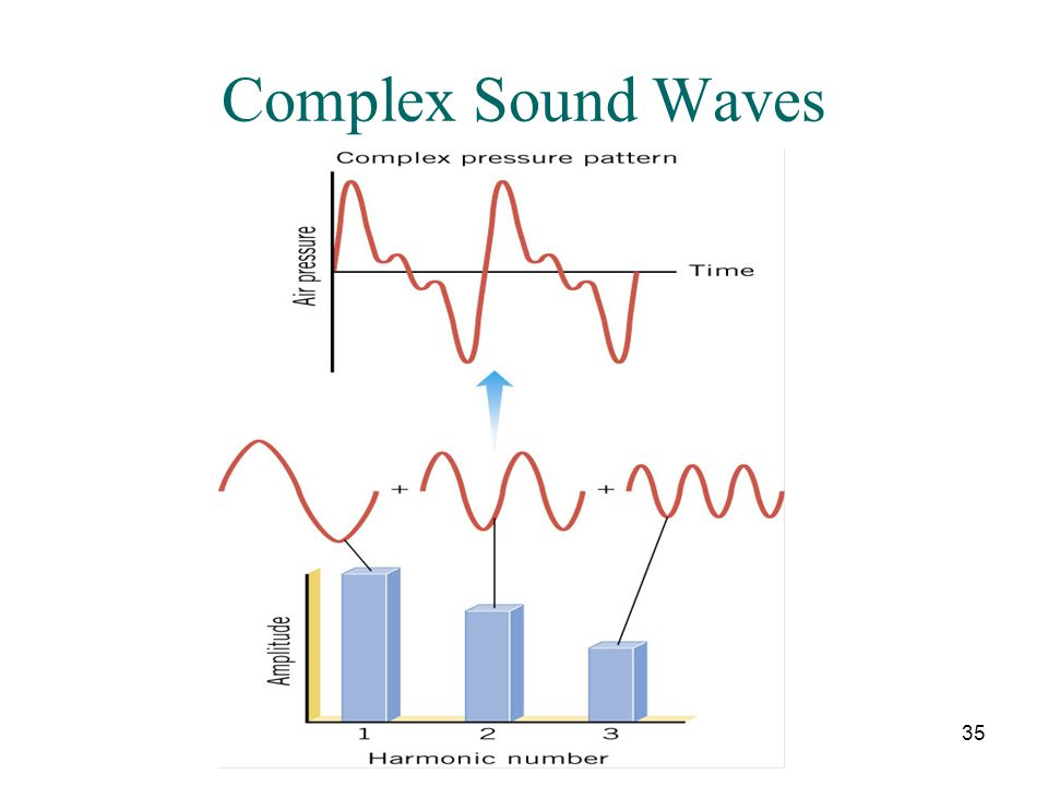 Complex Sound Waves