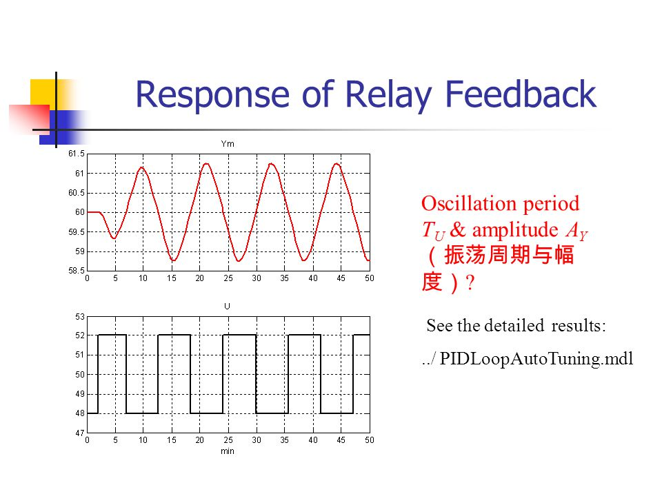 Response of Relay Feedback
