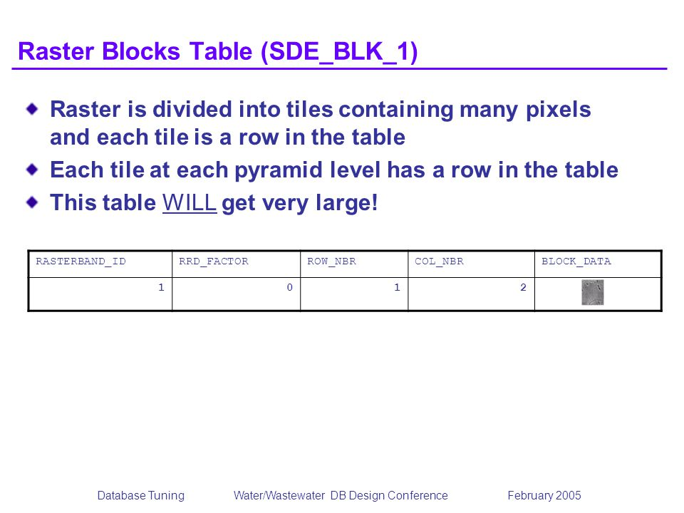 Raster Blocks Table (SDE_BLK_1)