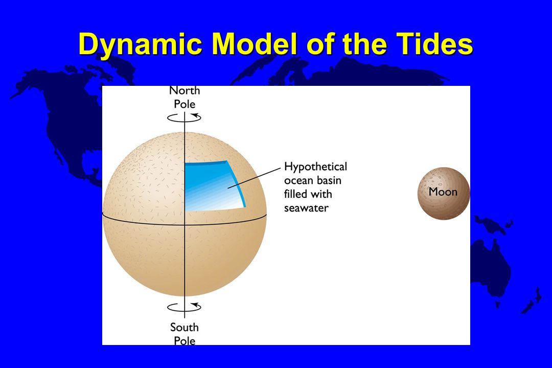 Dynamic Model of the Tides