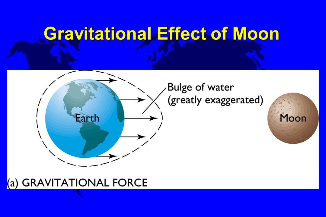 Gravitational Effect of Moon