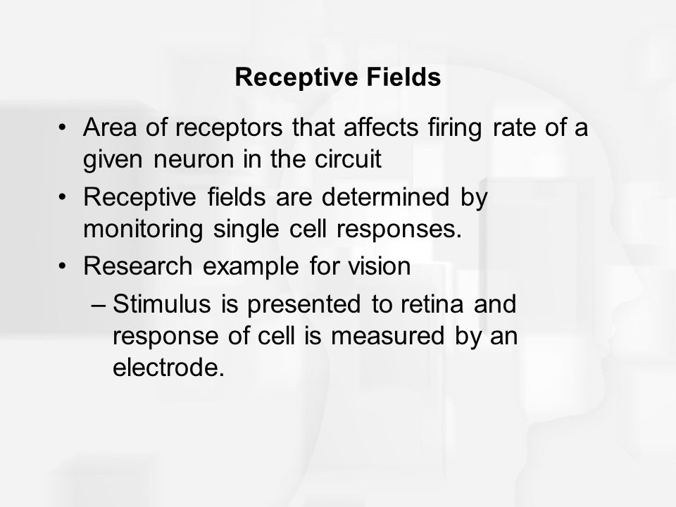 Receptive fields are determined by monitoring single cell responses.