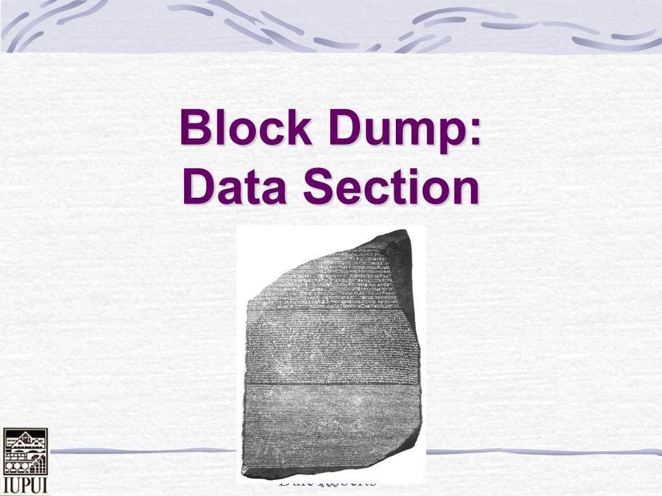 Block Dump: Data Section