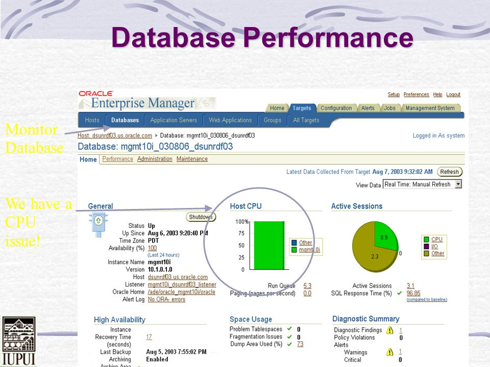 Database Performance Monitor Database We have a CPU issue!