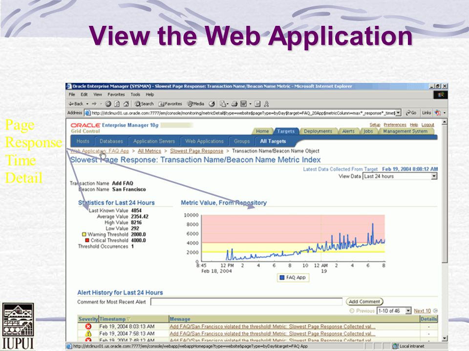 View the Web Application