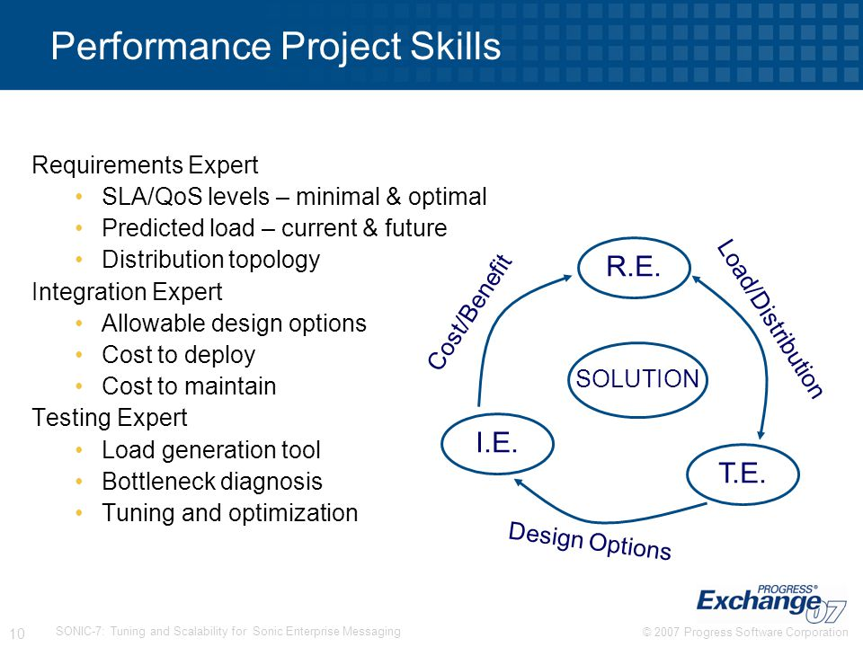Performance Project Skills