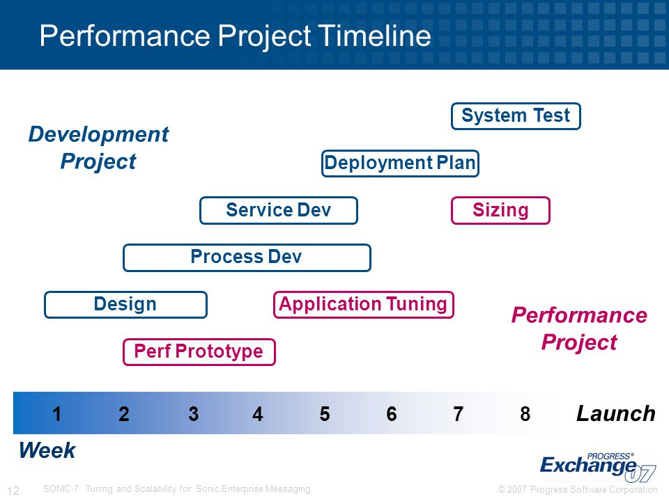 Performance Project Timeline