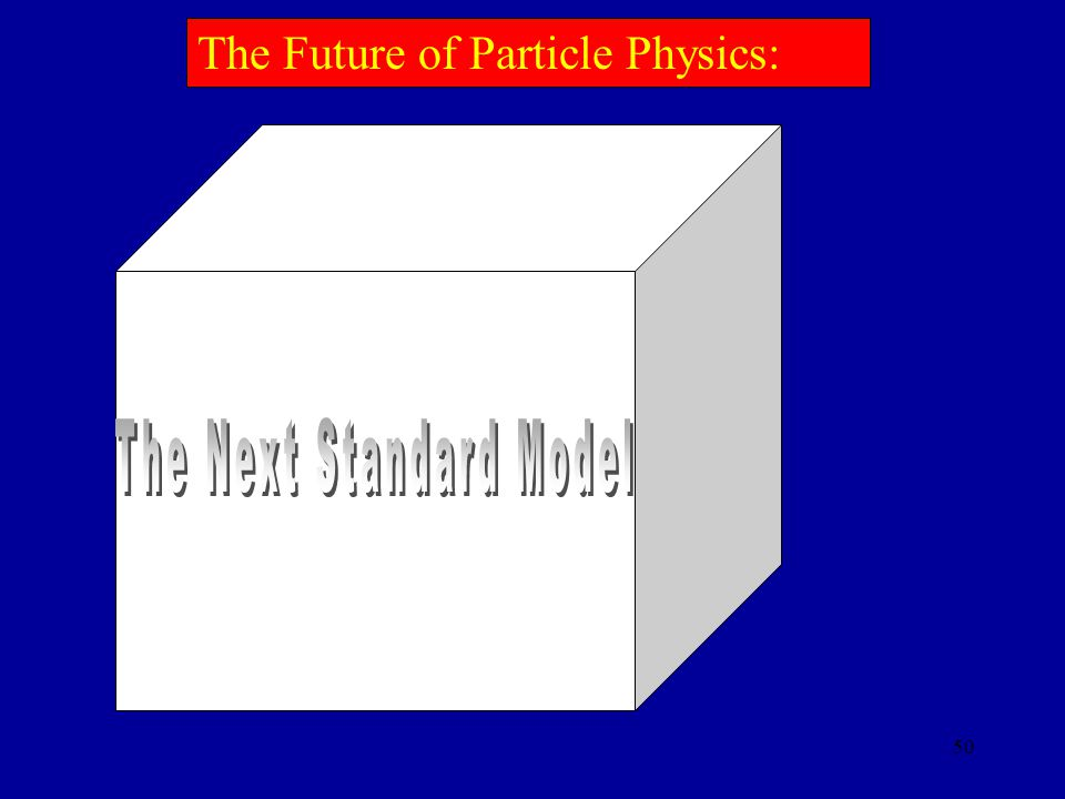 The Next Standard Model
