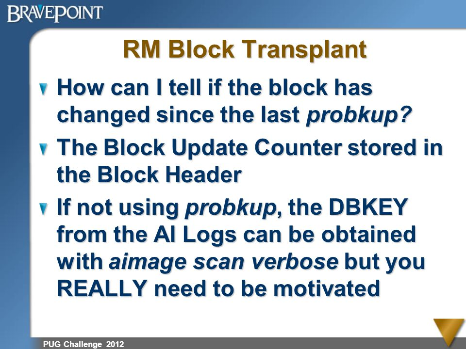 RM Block Transplant How can I tell if the block has changed since the last probkup The Block Update Counter stored in the Block Header.