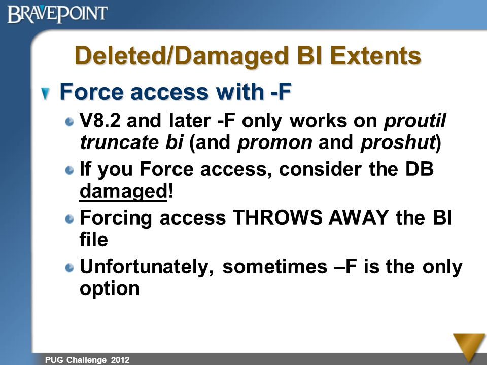 Deleted/Damaged BI Extents