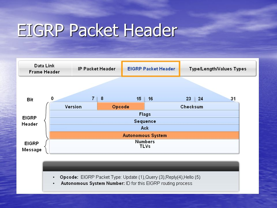 EIGRP Packet Header