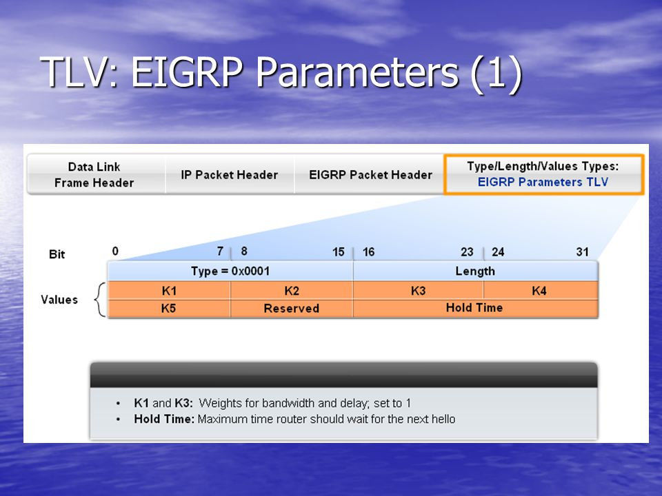 TLV: EIGRP Parameters (1)