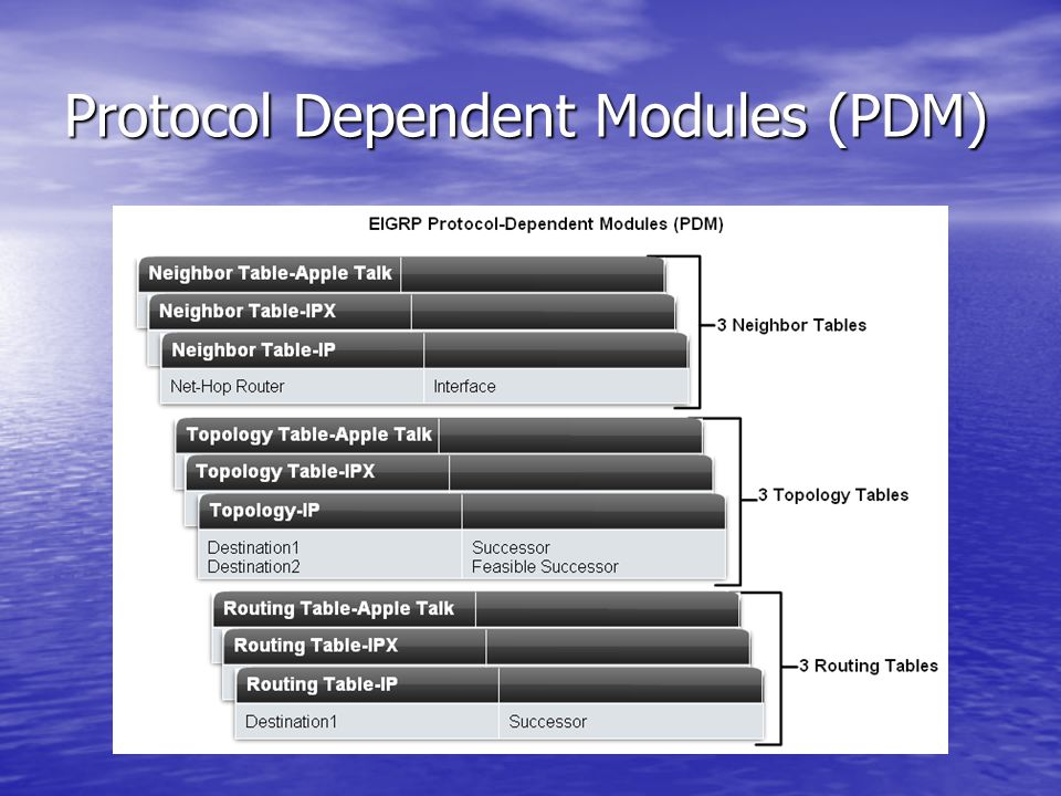 Protocol Dependent Modules (PDM)