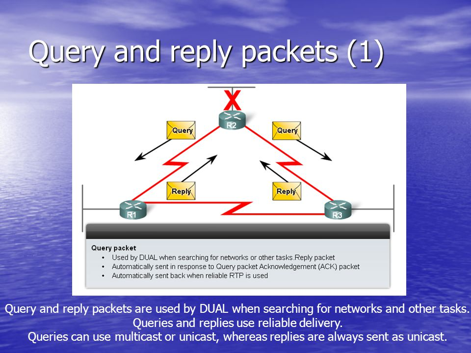 Query and reply packets (1)
