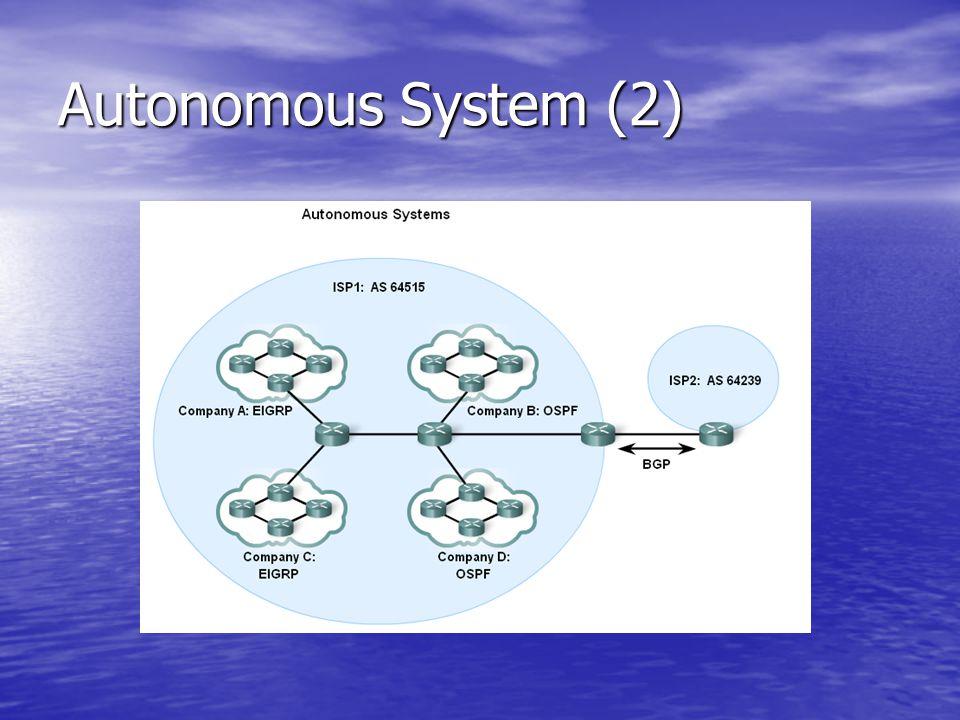 Autonomous System (2)