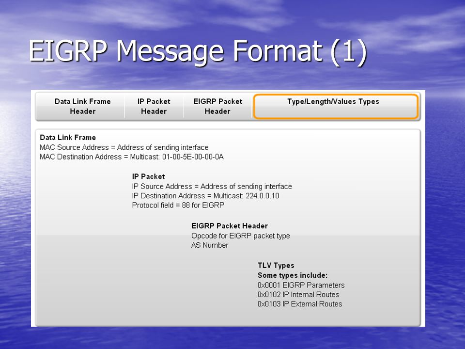 EIGRP Message Format (1)