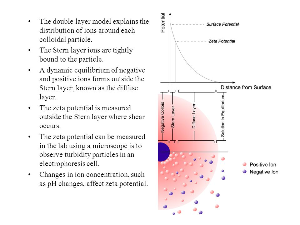The double layer model explains the distribution of ions around each colloidal particle.
