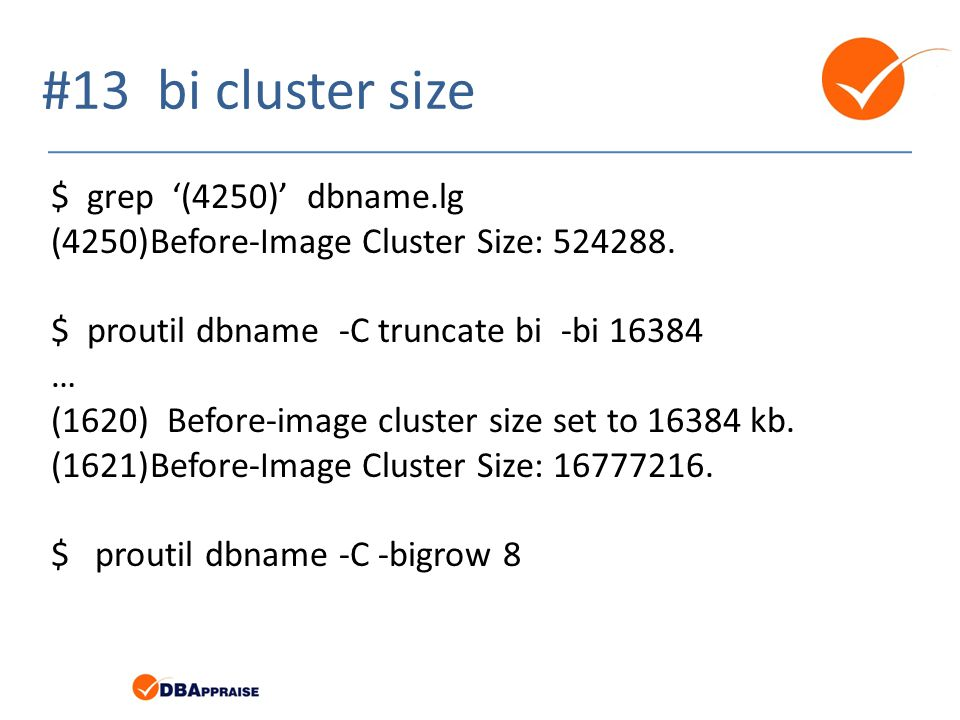 #13 bi cluster size $ grep '(4250)' dbname.lg