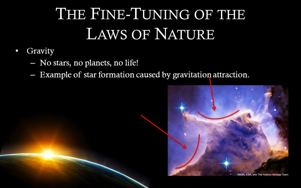 The Fine-Tuning of the Laws of Nature