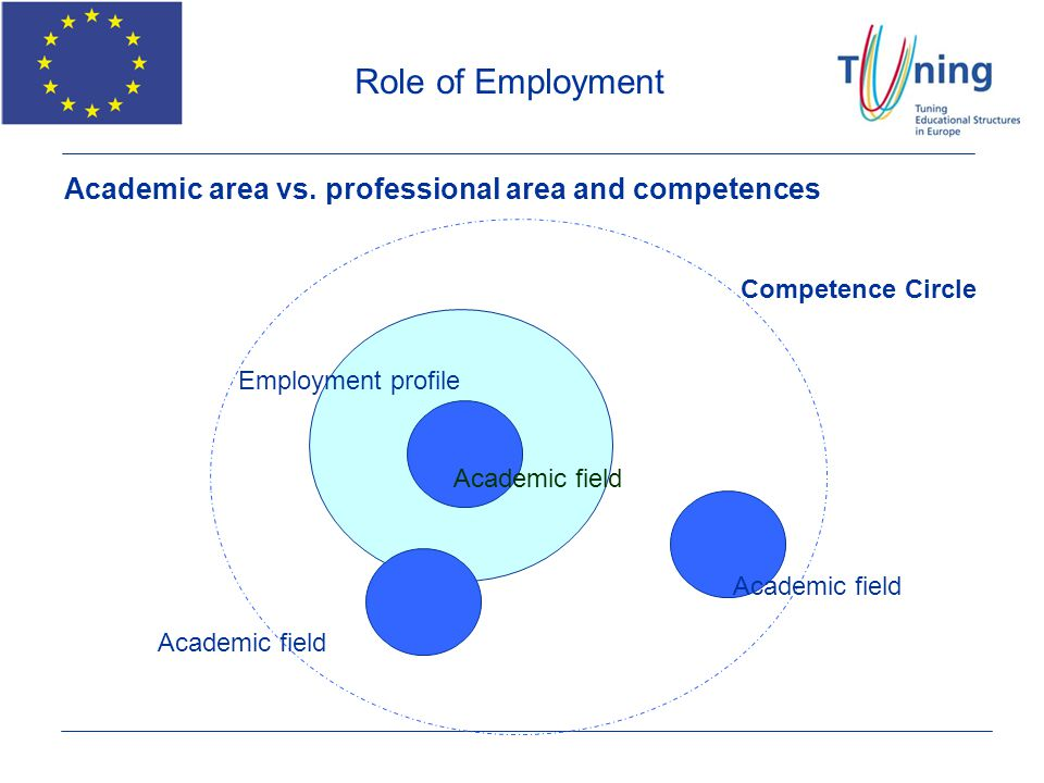 Role of Employment Academic area vs. professional area and competences