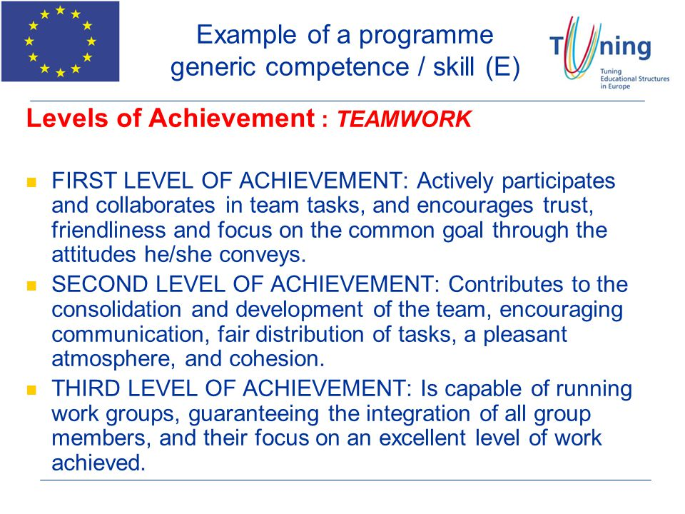 Example of a programme generic competence / skill (E)