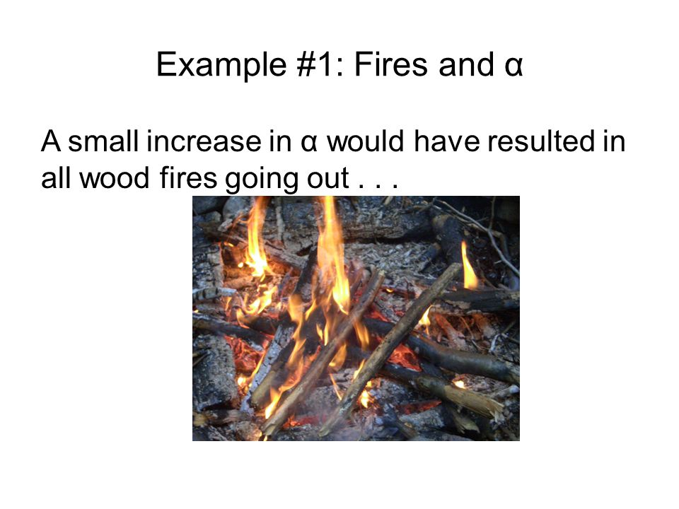 Example #1: Fires and α A small increase in α would have resulted in all wood fires going out . . .