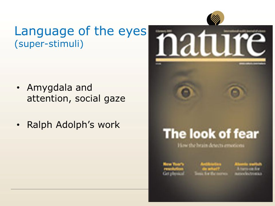 Language of the eyes (super-stimuli)