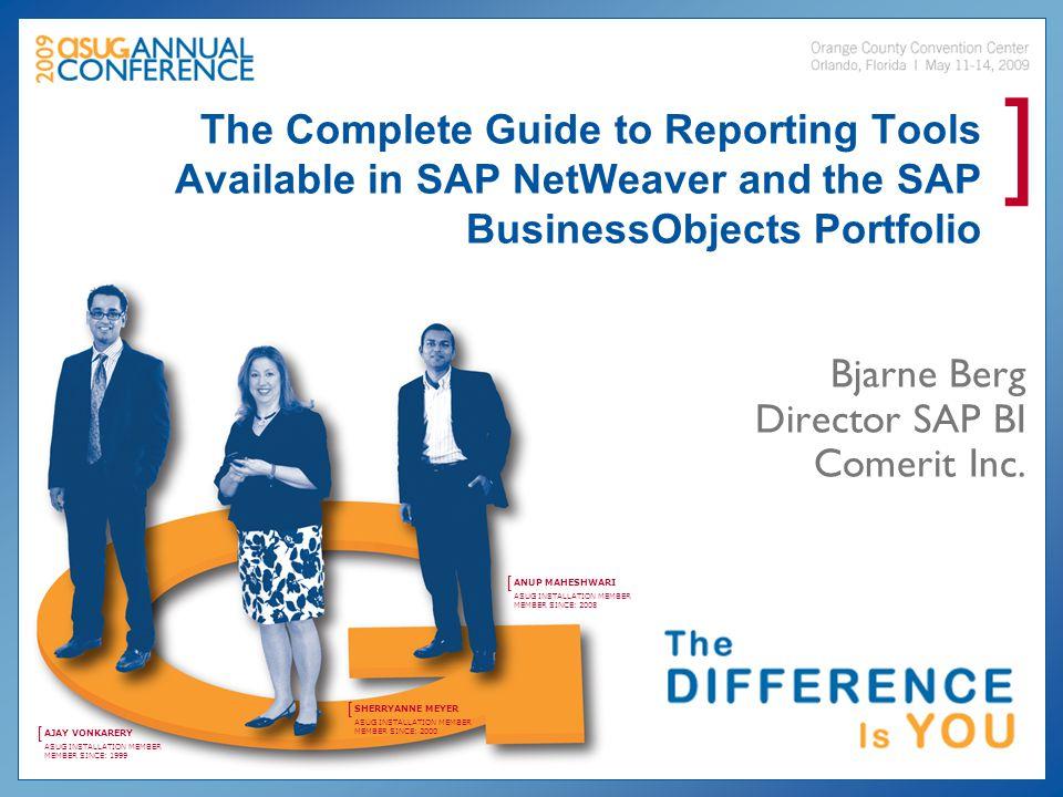 Bjarne Berg Director SAP BI Comerit Inc.